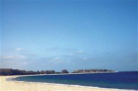 Image No.1-Terre à vendre à Vera