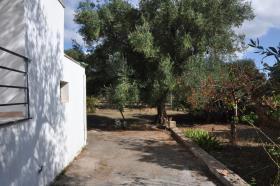 Image No.5-2 Bed Villa for sale