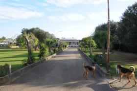 Image No.25-Villa de 3 chambres à vendre à San Vito dei Normanni
