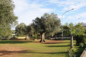 Image No.21-Villa de 3 chambres à vendre à San Vito dei Normanni