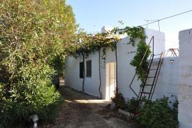Image No.6-Chalet de 3 chambres à vendre à San Vito dei Normanni