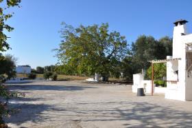 Image No.18-Chalet de 3 chambres à vendre à San Vito dei Normanni