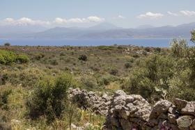 Image No.2-Terre à vendre à Drapanos