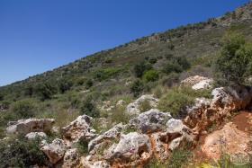 Image No.3-Terre à vendre à Drapanos