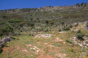 Image No.7-Terre à vendre à Drapanos