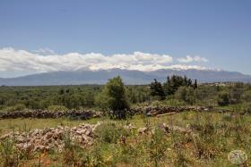 Image No.8-Terre à vendre à Drapanos