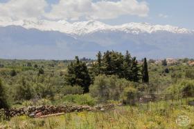Image No.12-Terre à vendre à Drapanos