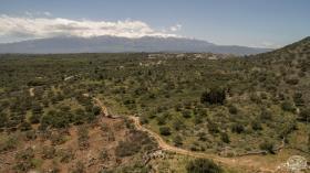 Image No.15-Terre à vendre à Drapanos