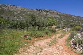 Image No.16-Terre à vendre à Drapanos