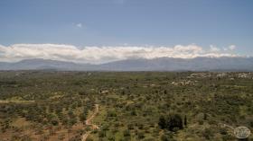 Image No.17-Terre à vendre à Drapanos