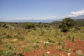 Image No.18-Terre à vendre à Drapanos