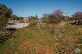 Image No.1-Terre à vendre à Kambia