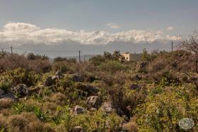 Image No.8-Terre à vendre à Kambia