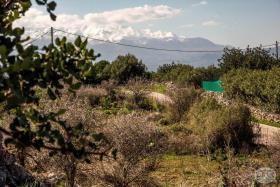 Image No.14-Terre à vendre à Kambia