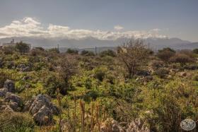 Image No.23-Terre à vendre à Kambia