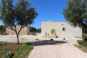Image No.0-Villa de 4 chambres à vendre à Carovigno