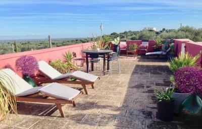 Roof-Garden-full-view