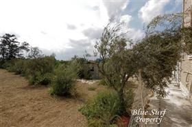 Image No.23-Villa de 3 chambres à vendre à Vrysoules