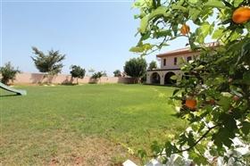 Image No.22-Villa de 5 chambres à vendre à Paralimni