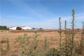 Deryneia, Property