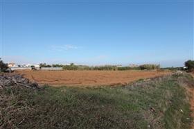 Ayia Triada, Property
