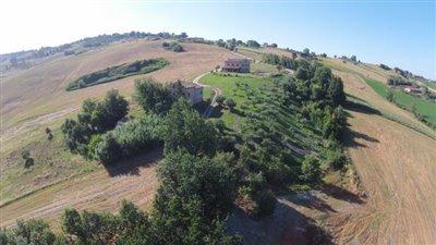 lo-Villa-drone-over-grove
