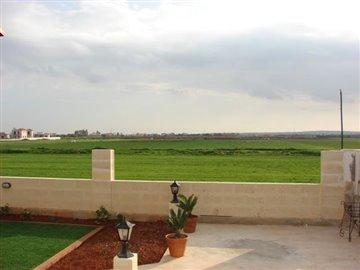 open-field-view