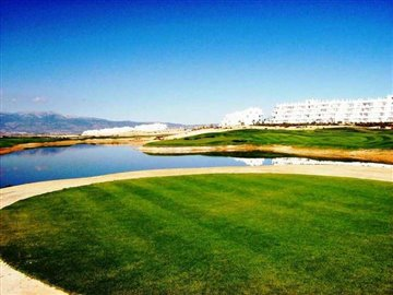 237-for-sale-in-alhama-de-murcia-6250-large