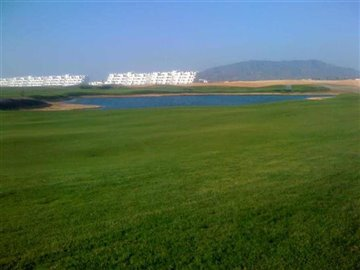 238-for-sale-in-alhama-de-murcia-6259-large
