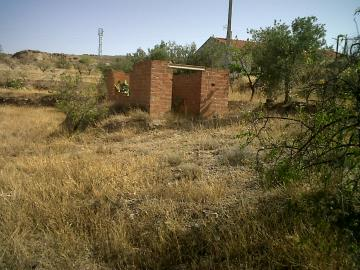Plot-Of-Land-No-2---Outbuilding-No-2-With-Fruit-Plants