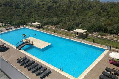 swimming-pool-big