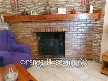 property36020683