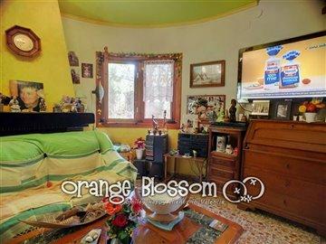 property36306108