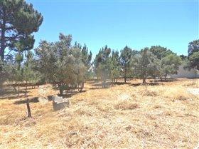 Image No.4-Terrain à vendre à Sesimbra