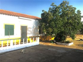 Image No.4-4 Bed Farmhouse for sale