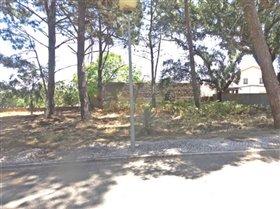 Image No.0-Terrain à vendre à Sesimbra