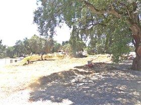 Image No.10-Terrain à vendre à Sesimbra