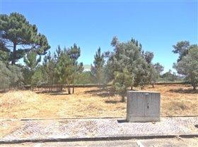 Image No.1-Terrain à vendre à Sesimbra
