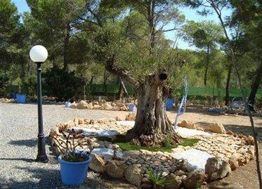 tnbace3y8yhuis-met-grote-tuin-en-zwembad-in-e
