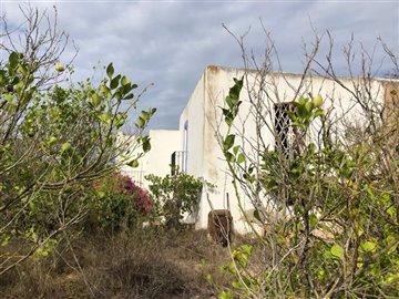 fe1yibar8njfantastic-finca-of-300-m2-surround