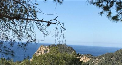 8d82f8ely08cw-ibiza-155307350852328plot-with-