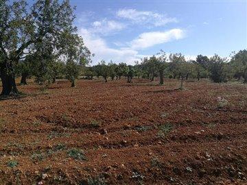1pwwr1qpov2authentieke-boerderij-te-renoveren