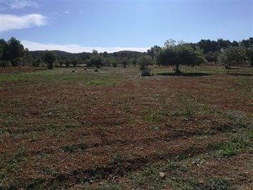 rweeng2ulrauthentieke-boerderij-te-renoveren-