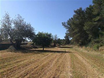 r2wvitl1ltpauthentieke-boerderij-te-renoveren