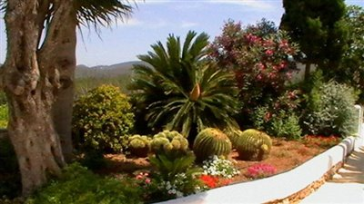 uvoy1875mmhbeautiful-authentic-finca-with-gue