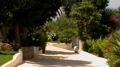 ntz68hr6sjbeautiful-authentic-finca-with-gues