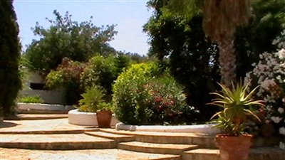 z6a3dlb4cbeautiful-authentic-finca-with-guest