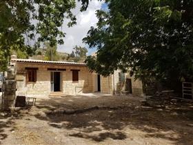 Akoursos, House