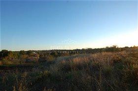 Image No.1-Terre à vendre à Algarve