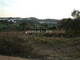 Image No.10-Terre à vendre à Silves